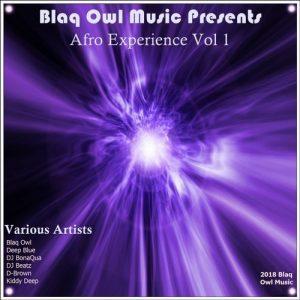 VA - Afro Experience, Vol. 1 [Blaq Owl Music]