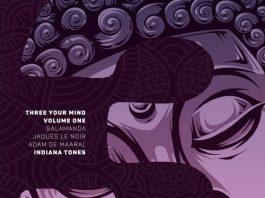 VA - Three Your Mind Vol. 1 [Indiana Tones