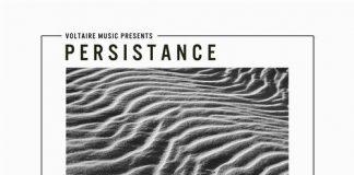 VA - Voltaire Music pres. Persistence #11 [Voltaire Music]