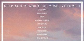 VA - Deep And Meaningful Music Vol. 2 [Complex Recs]