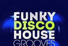 VA - Funky Disco House Grooves, Vol. 10 [LW Recordings]