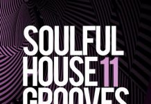 VA - Soulful House Grooves, Vol. 11 [LW Recordings]