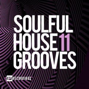 VA - Soulful House Grooves, Vol. 11 [LW Recordings]