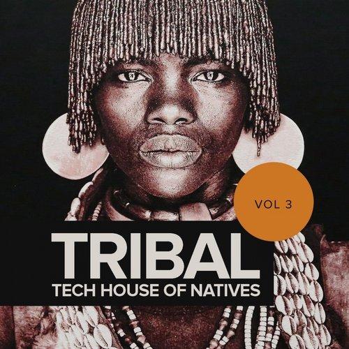 Va tribal tech house of natives vol 3 rimoshee traxx for Tribal house tracks