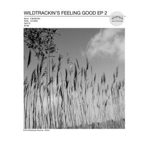 Wildtrackin's Feeling Good 2