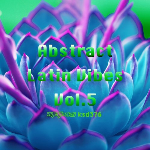 VA - Abstract Latin Vibes Vol. 5 [Nite Grooves]