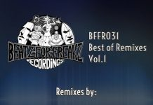VA - Best of Remixes, Vol. 1 [Beatz for Freakz Recordings]