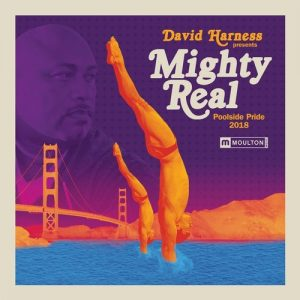 VA - David Harness Presents Mighty Real Poolside Pride 2018 [Moulton Music]
