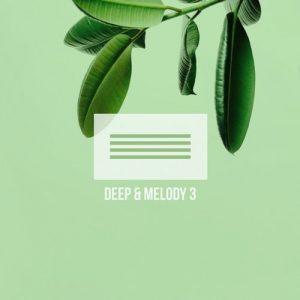 VA - Deep & Melody 3 [Mycrazything Entertainment]