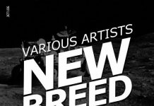 VA - New Breed Vol.I [Jeton Records]