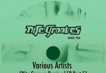 VA - Nite Grooves Remixed EP, Part 5 [Nite Grooves]
