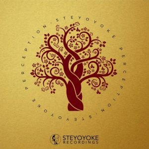 VA - Steyoyoke Perception, Vol. 3 [Steyoyoke]