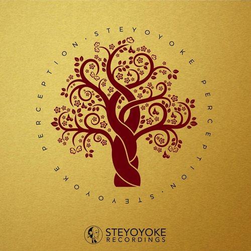 VA - Steyoyoke Perception, Vol. 3 [Steyoyoke]