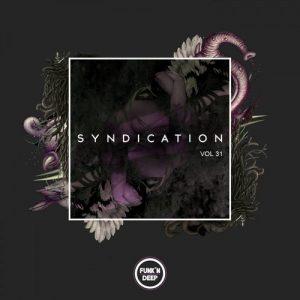 VA - Syndication, Vol. 31 [Funk'n Deep Records]