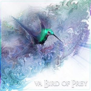 VA - VA Bird of Prey [Space Baby Records]