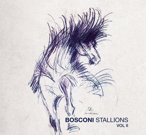 VA - Bosconi Stallions Vol.2 - !0 Years Of Bosconi Records [Bosconi Records]
