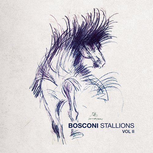VA - Bosconi Stallions Vol.2 - !0 Years Of Bosconi Records [Bosconi Records]