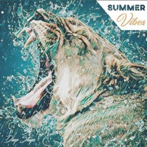 VA - Summer Vibes [Deep Strips]