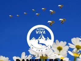 VA - Natura Viva In The Mix With Daniel Lera [Natura Viva In The Mix]