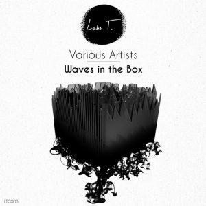 VA - Waves in the Box [Labo T]