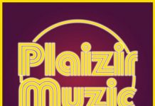 VA - Compilation Plaizir Muzic, Vol. 2 [Plaizir Muzic]