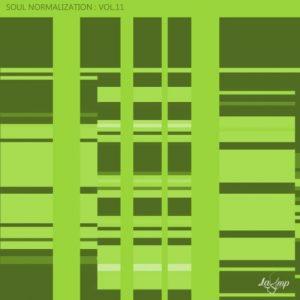 VA - Soul Normalization Vol 11