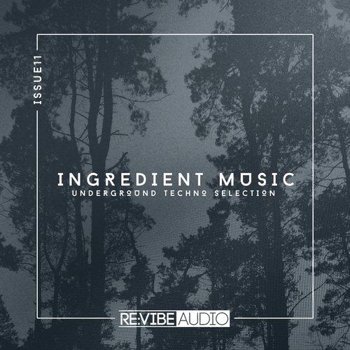 VA - Ingredient Music, Vol. 11 [Re:vibe Audio]