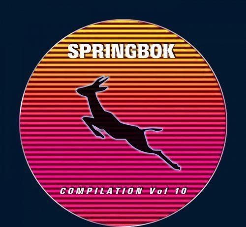 VA - Springbok Compilation, Vol. 10 [Springbok Records]