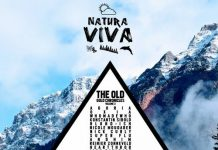VA - The Old Gold Chronicles Volume 3 [Natura Viva]