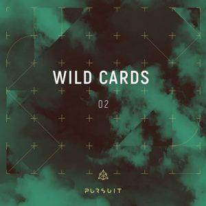 VA - Wild Cards 02 [Pursuit]