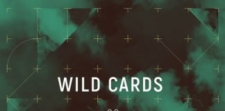 VA - Wild Cards 02 [Pursuit]