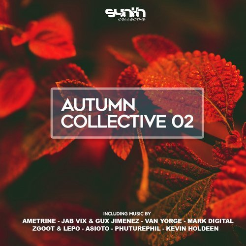 VA - Autumn Collective 02 [Synth Collective]