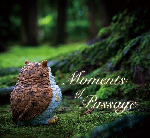 VA - Moments of Passage [As Like Music]