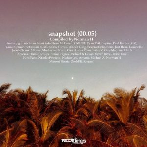 VA - Snapshot {00.05} - Compiled by Norman H [Stripped Recordings]