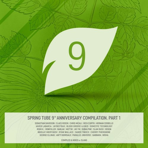 VA - Spring Tube 9th Anniversary Compilation, Pt.1 [Spring Tube]