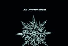 VA - VESTA Winter Sampler [Vesta Records]