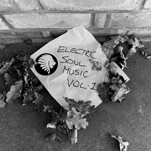 VA - Electric Soul Music Vol. 1 [We Are The Brave]