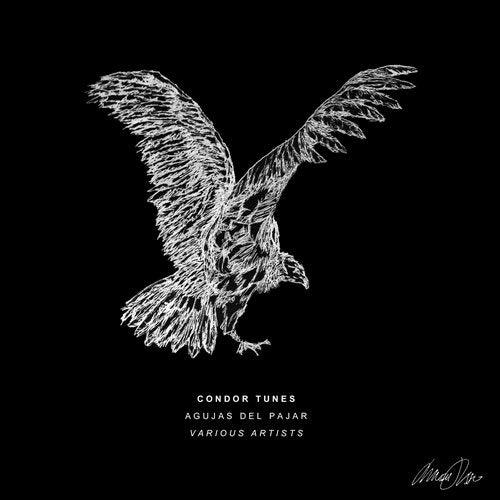 VA - Agujas Del Pajar [Condor Tunes]