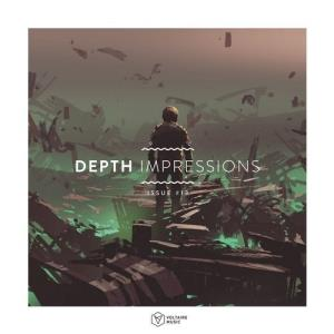 VA - Depth Impressions Issue #13 [Voltaire Music]