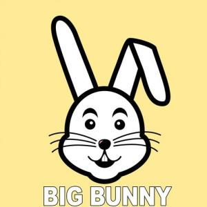 VA - Ibiza Opportunities [Big Bunny]