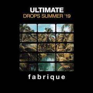 VA - Ultimate Drops Summer '19 [Fabrique Recordings]