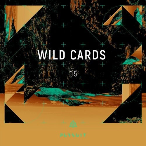 VA - Wild Cards 05 [Pursuit]