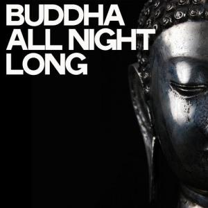 VA - Buddha All Night Long [Lugano Like Music]
