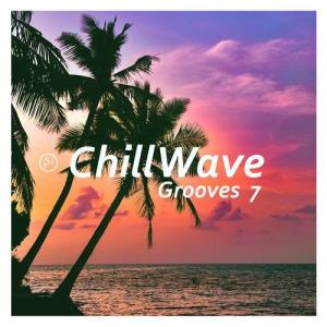 VA - PI ChillWave Grooves VII [Planet Inspiration]