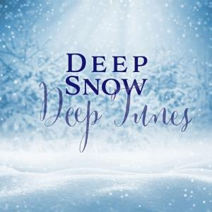 VA - Deep Snow Deep Tunes [BE52 Records]