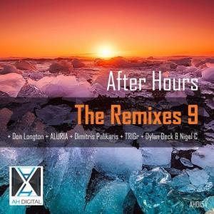 VA - After Hours - the Remixes 9 [AH Digital] [FLAC]