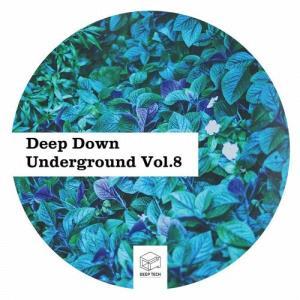 VA - Deep Down Underground Vol.8 [Deep Tech Records]