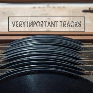 VA - Very Important Tracks [Technosforza]