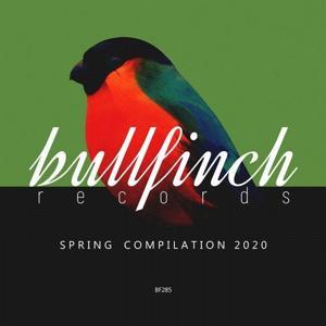 VA - Bullfinch Spring 2020 Compilation [BF285]