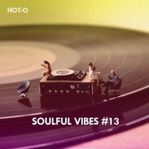VA - Soulful Vibes, Vol. 13 [HOTQSV013]